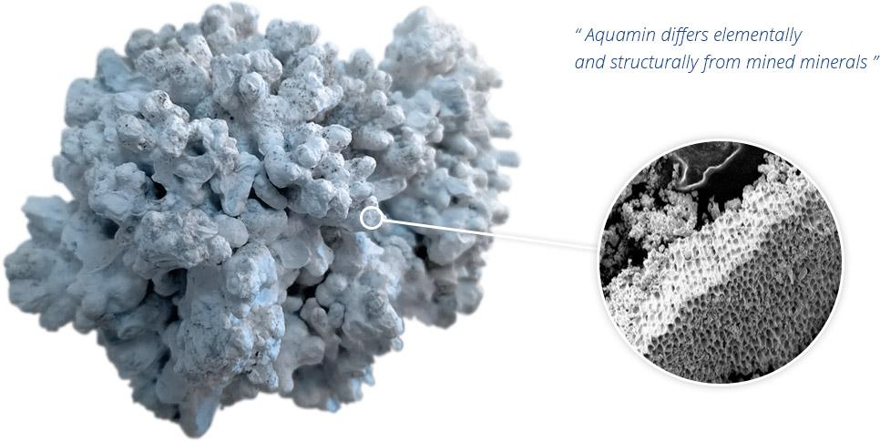 Aquamin Struktur