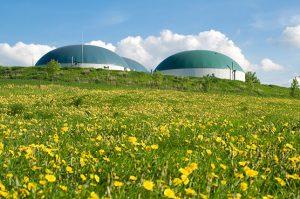Biogas-Additive