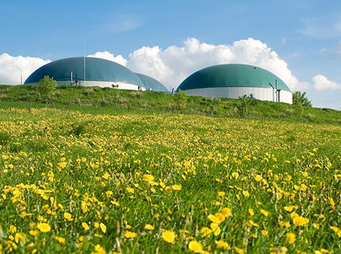 Biogas-Additive